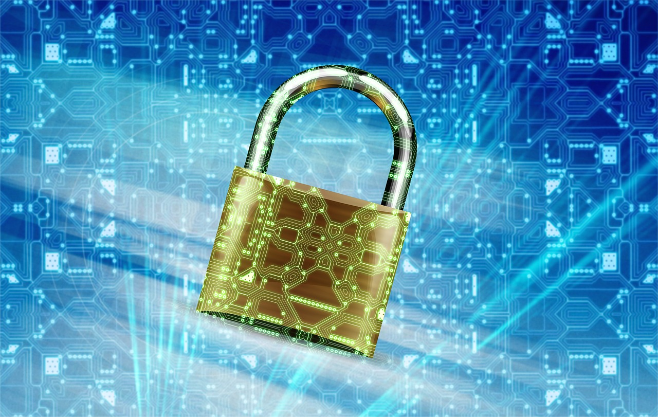 Data Privacy image by JanBaby https://pixabay.com/en/security-secure-locked-technology-2168233/